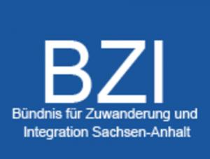 BZI_Logo