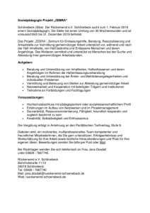 thumbnail of Stellenausschreibung-ZEBRA2019